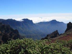 La Palma Tauchen auf den Kanaren Kanarische Inseln Atlantik