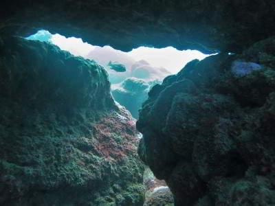 Sardina del Norte Scuba Sur Gran Canaria tauchen kanaren kanarische inseln atlantik