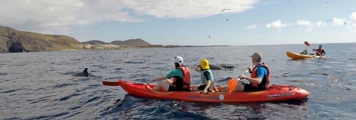 Kayaking XploreTenerife Teneriffa Sehenswürdigkeiten Kanaren Kanarische inseln urlaub aktivitäten