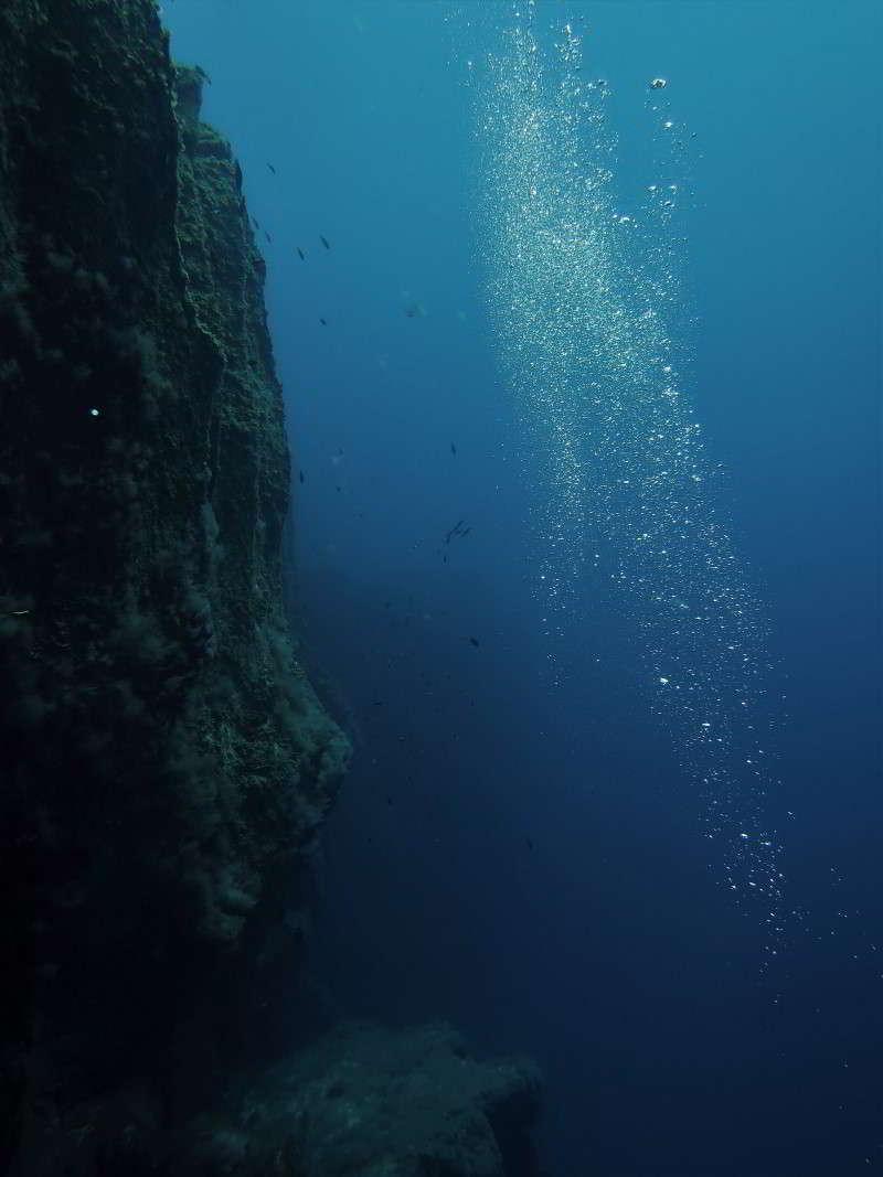 Punta Restinga tauchen el hierro steilwand la kanaren kanarische inseln atlantik