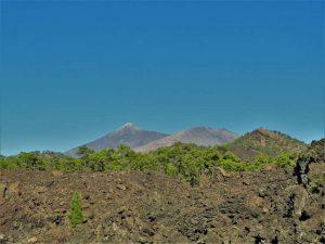 Teneriffa Sehenswürdigkeiten Pico del Teide Nationalpark Ausflugsziele