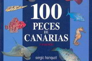 100 Fische der Kanaren Sergio Hanquet 100 peces de canarias buch tauchen kanarische inseln vorschau